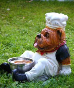 Wie findest du das richtige Futter für deine Hunderasse?
