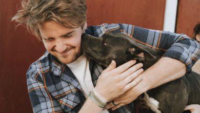 Bild von Ist eine Hundetherapie für diese 10 Probleme nützlich?