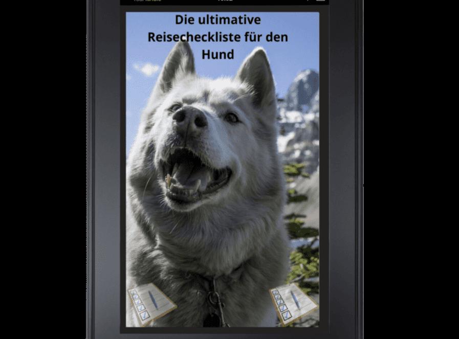 die ultimative reisecheckliste für den hund tablet cover
