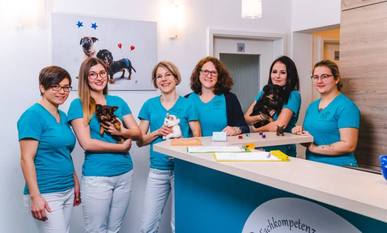 tierarzt für kleintiere in passau 1