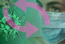 Photo of Geheimnis – Coronavirus Übertragung durch Haustiere möglich?