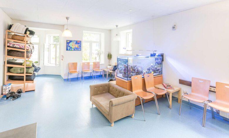 tierarzt in bludenz vorarlberg österreich