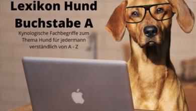 lexikon hund buchstabe a