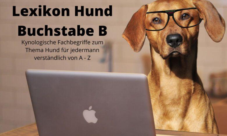 lexikon hund buchstabe b