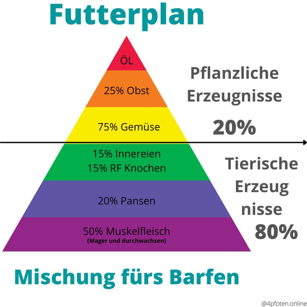 barf futterplan mischung infografik