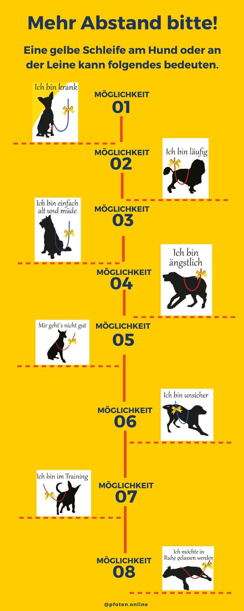 gelbe schleife beim hund - infografik
